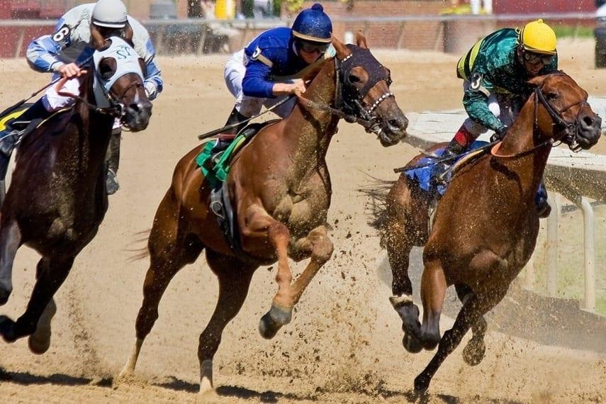 Фото конных скачек с праздника Сабантуй