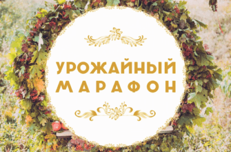 "Баннер видеопроекта ""Урожайный марафон"""